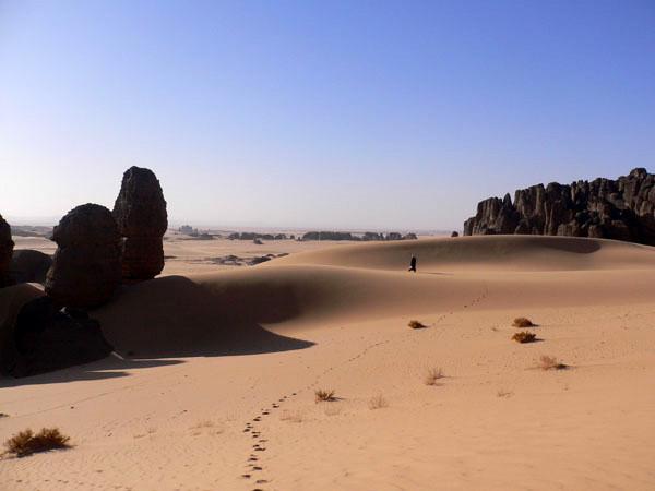 Une multitude de voyages th matiques d couvrir avec l for Agence horizon paysage